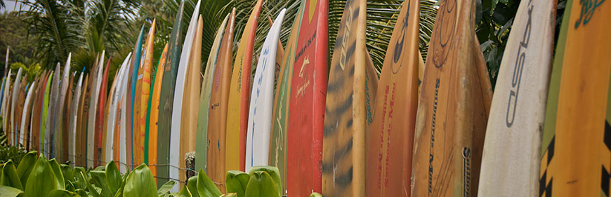 Main Image Surf trip with boards