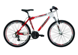 mountaion bike basic